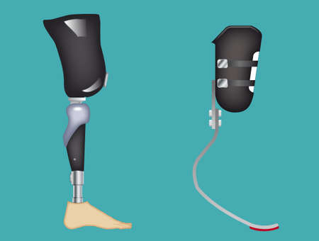 Carbon fiber prosthetic leg. Elements are on a separate layer and can be easily removed.