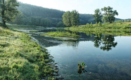 backwater: Small narrow and shallow river on background of forest slope