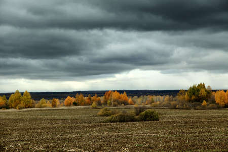 Dark clouds over the wooded area and field in autumn
