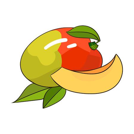 tree fruit: Fruit mango hand drawn doodle vector illustration Illustration
