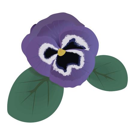 violet flower: Violet flower doodle hand drawn vector illustration Illustration