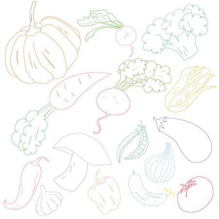 pumpkin seeds: Vegetables color outline doodle hand drawn  vector illustration