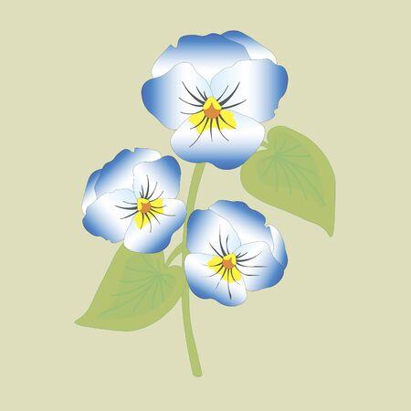 viola: Viola flower doodle hand drawn vector illustration