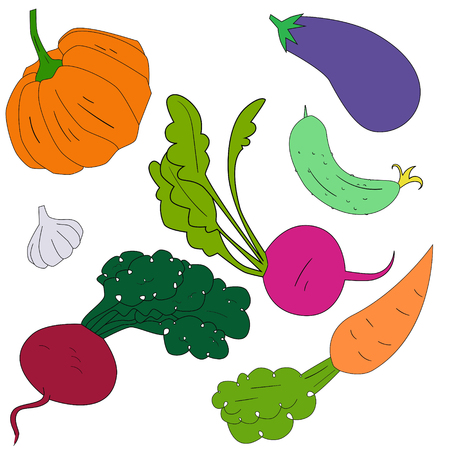 seed bed: Green vegetables healthy food doodle hand drawn vector illustration