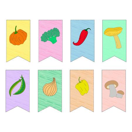 pumpkin seeds: Vegetables on flags doodle hand drawn  vector illustration