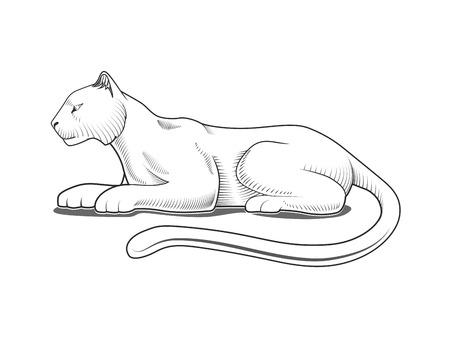 Estilo Pantera emblema grabado ilustración vectorial blanco y negro Foto de archivo - 46506412