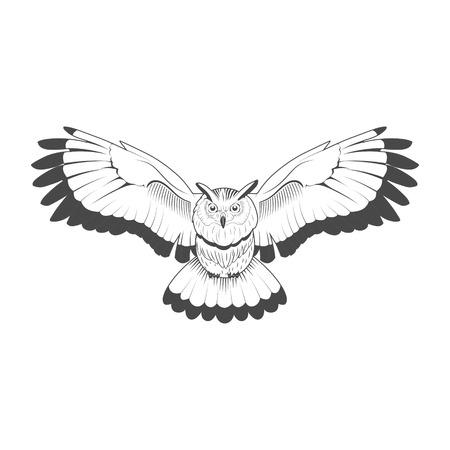 owl illustration: Wild owl emblem black and white vector illustration