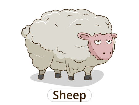 Sheep animal cartoon colorfil vector illustration for children