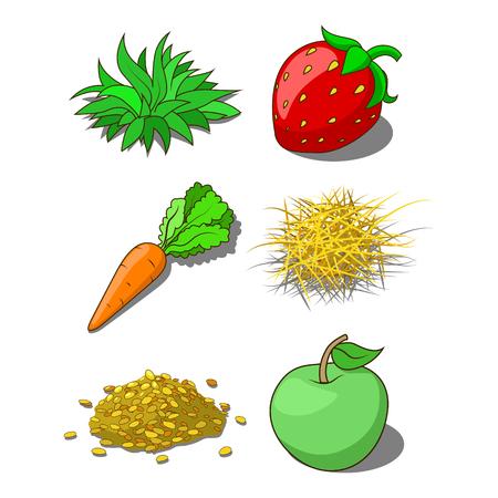 forage: Animals food corn grass hay carrot vector illustration