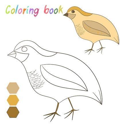 Coloring Book Quail Kids Layout For Game Doodle Hand Drawn Cartoon Vector Illustration