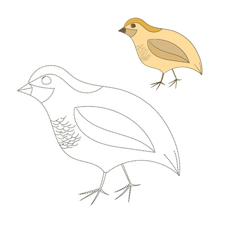 joining the dots: Connect the dots game quail cartoon hand drawn doodle vector illustration