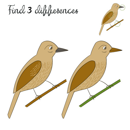 game bird: Find differences kids layout for game bird cartoon doodle hand drawn  vector illustration
