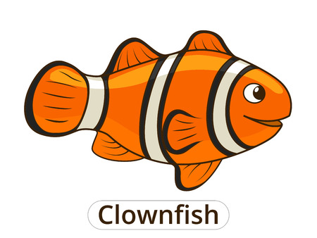 Clownfish sea fish cartoon colorful vector illustration for children