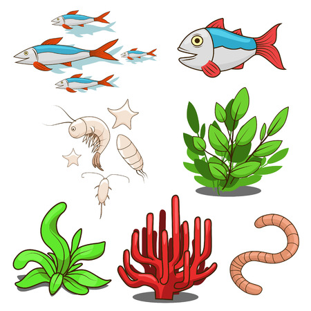krill: Water animals fish food cartoon colorful vector illustration