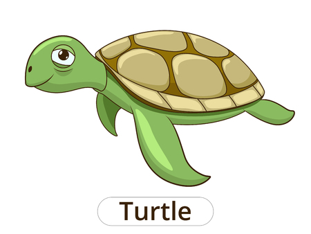Turtle underwater animal cartoon vector illustration for children