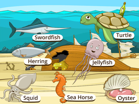 wrecked: Underwater animals and fish with names vector cartoon educational illustration