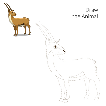 gazelle: Draw animal gazelle educational game cartoon colorful vector illustration