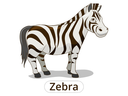 Zebra african savannah animal cartoon vector illustration for children