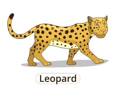 Leopard african savannah animal cartoon vector illustration for children