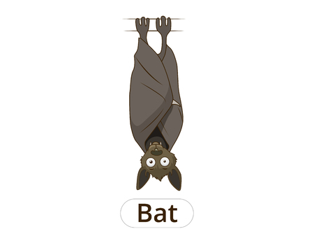 bloodsucker: Forest animal bat cartoon for children vector illustration