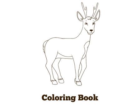 Zeichnen Sie Das Waldtier Reh Cartoon Für Kinder Vektor Illustration