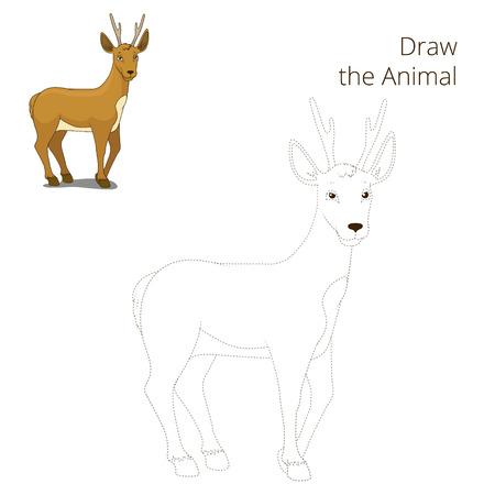 roe: Draw the forest animal roe deer cartoon for children vector illustration Illustration