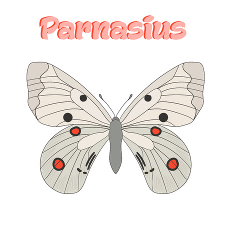 butterfly: Butterfly parnasius cartoon doodle hand drawn vector illustration