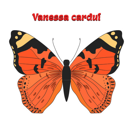 vanessa: Butterfly vanessa cardui cartoon doodle hand drawn vector illustration Illustration