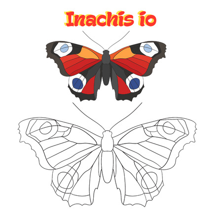 inachis: Educational game for children coloring book  butterfly cartoon doodle hand drawn vector illustration