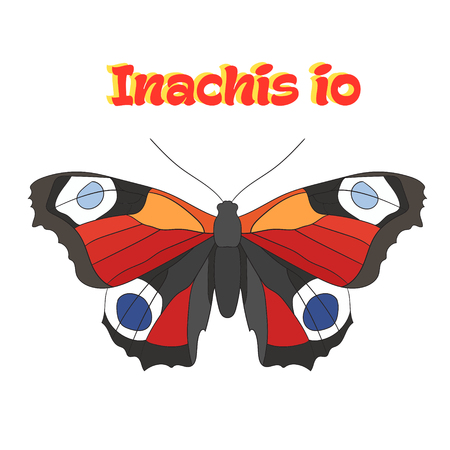 inachis: Butterfly inachis io cartoon doodle hand drawn vector illustration