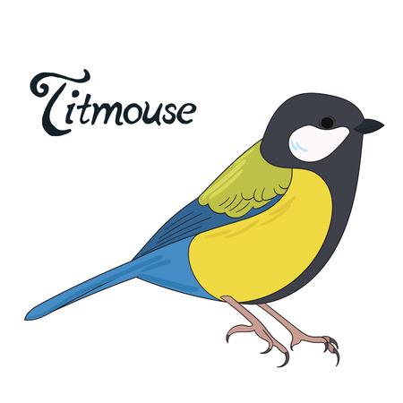 titmouse: Bird titmouse cartoon doodle hand drawn vector illustration