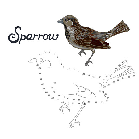 sparrow bird: Educational game connect the dots to draw sparrow bird cartoon doodle hand drawn vector illustration
