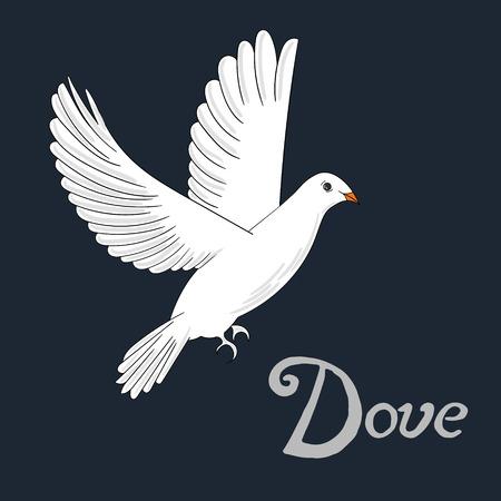 paloma caricatura: Paloma pájaro bosquejo de dibujos animados a mano ilustración vectorial dibujado