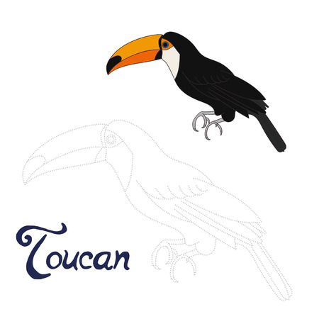 Educational game connect the dots to draw toucan bird cartoon doodle hand drawn vector illustration