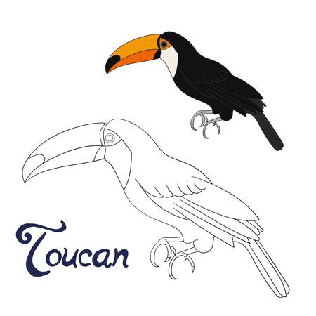 Lernspiel Malbuch Toucan Vogel Cartoon doodle Hand gezeichnet Vektor-Illustration Standard-Bild - 46723513