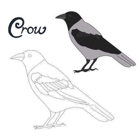 game bird: Educational game connect the dots to draw crow bird cartoon doodle hand drawn vector illustration