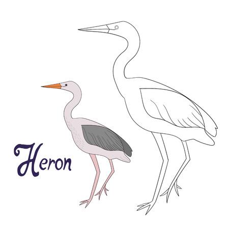Educational game coloring book heron bird cartoon doodle hand drawn vector illustration