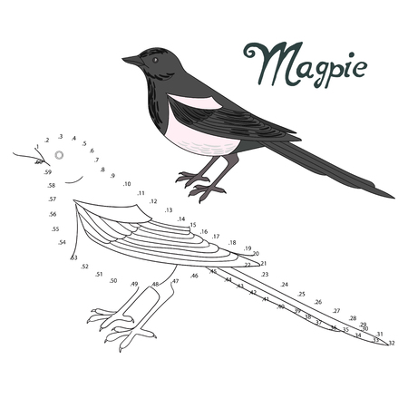 migratory: Educational game connect the dots to draw magpie bird   cartoon doodle hand drawn vector illustration