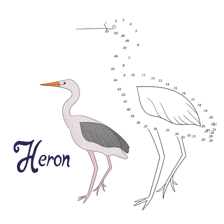 Educational game connect the dots to draw heron bird cartoon doodle hand drawn vector illustration