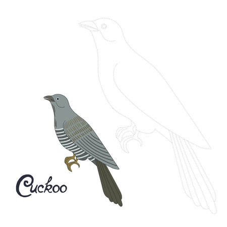 dyeing: Educational game connect the dots to draw cuckoo bird cartoon doodle hand drawn vector illustration Illustration