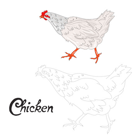 dyeing: Educational game connect the dots to draw chicken hen bird cartoon doodle hand drawn vector illustration Illustration