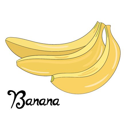 banaan cartoon: Fruit banana cartoon doodle hand drawn vector illustration
