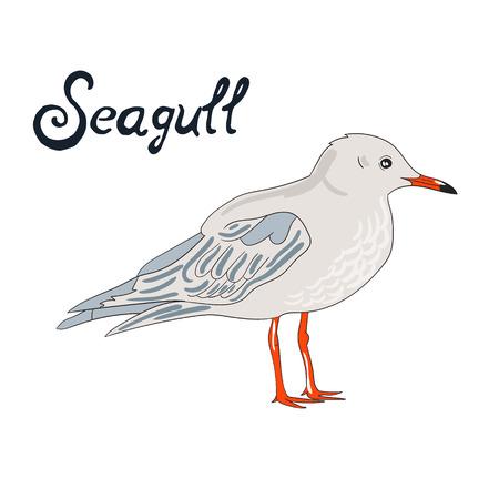 dyeing: Bird seagull cartoon doodle hand drawn vector illustration Illustration