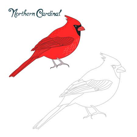 puntos cardinales: Juego educativo conectar los puntos para dibujar cardinal norte del doodle de la historieta del pájaro dibujado a mano ilustración vectorial Vectores