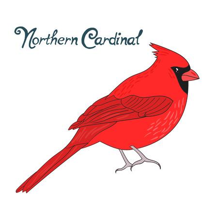 puntos cardinales: ejemplo del vector dibujado pájaro cardinal norte bosquejo de dibujos animados mano