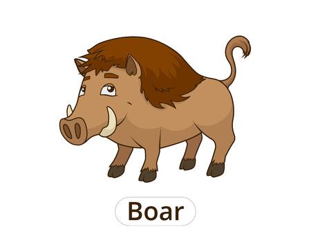 nocturnal animal: Forest animal boar cartoon for children vector illustration