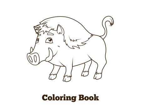 nocturnal animal: Forest animal boar cartoon coloring book for children vector illustration