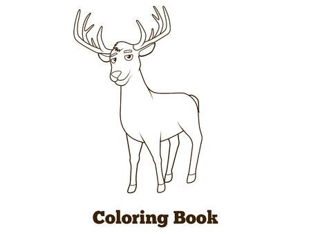 nocturnal animal: Forest animal deer cartoon coloring book for children vector illustration Illustration