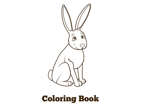 nocturnal animal: Forest animal hare cartoon coloring book for children vector illustration