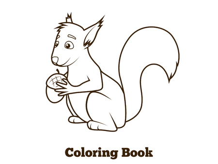 nocturnal animal: Forest animal squirrel cartoon coloring book for children vector illustration